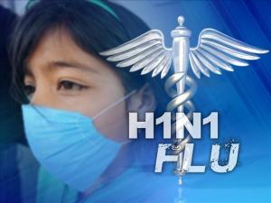 SwineFluH1N1(1)